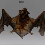 Genuine Small Bat in Lucite
