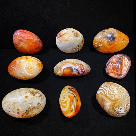 Botswana Agate Palm Stone