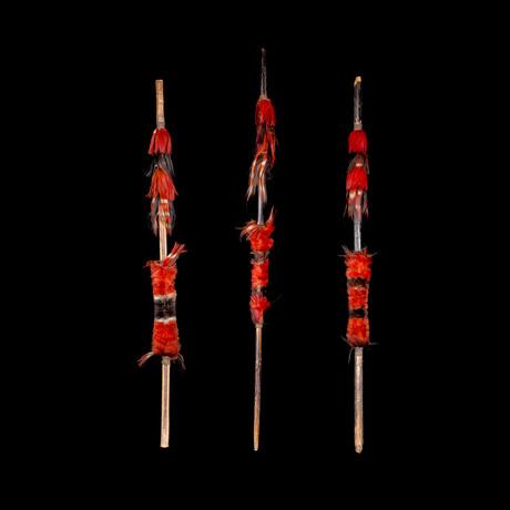 Three Naga Spears // Late 19th / Early 20th Century India/Burma // Ex Allan Stone Collection