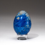 Genuine Polished Lapis Lazuli Egg + Acrylic Display Stand