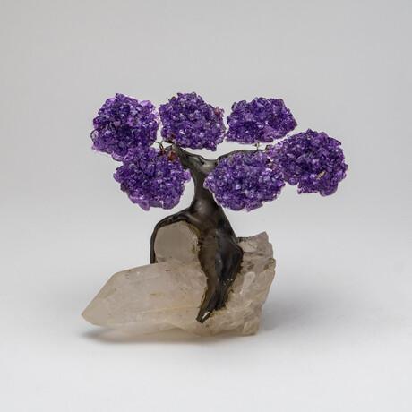 The Harmony Tree // Genuine Amethyst Clustered Gemstone Tree on Large Clear Quartz Crystal Matrix // Small