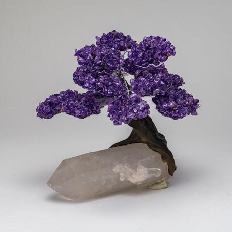 The Harmony Tree // Genuine Amethyst Clustered Gemstone Tree on Large Clear Quartz Crystal Matrix // Large