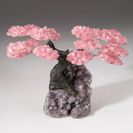 The Love Tree // Genuine Custom Rose Quartz Clustered Gemstone Tree on Amethyst Matrix // V4