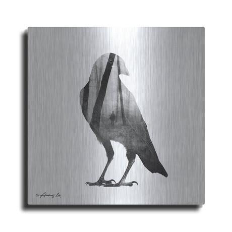"Black and White Bird (12""H  x 12""W  x  0.13""D)"