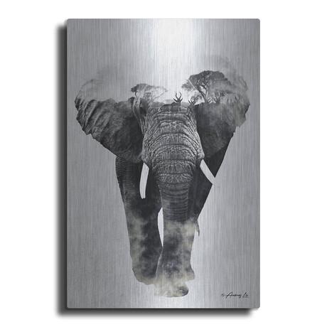 """Elephant Walk (16""""H  x 12""""W  x  0.13""""D)"""