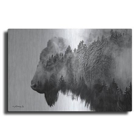 """Black and White Bison (12""""H  x 16""""W  x  0.13""""D)"""