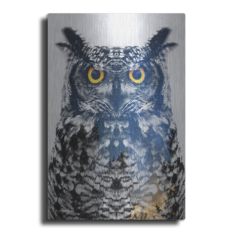 "Night Owl (16""H  x 12""W  x  0.13""D)"