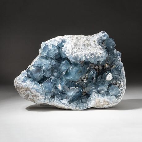 Genuine Blue Celestite Cluster Geode // V1