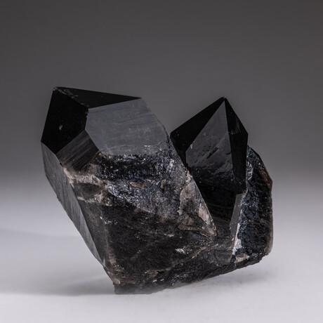 Genuine Twinned Smokey Quartz Crystals