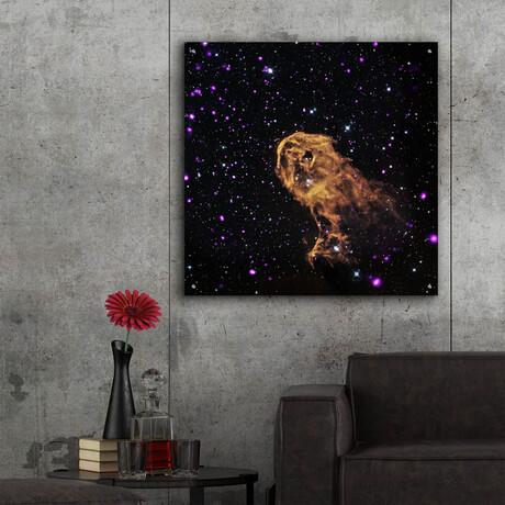"""Elephant Trunk Nebula (12""""H x 12""""W x 0.13""""D)"""