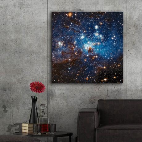 """LH 95 Star Cluster (12""""H x 12""""W x 0.13""""D)"""