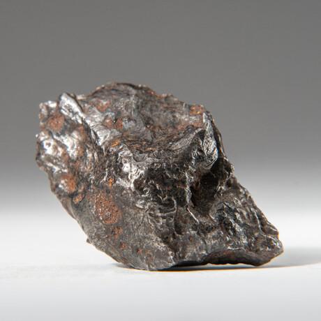 Genuine Natural Sikhote-Alin Meteorite + Display Box // 53 g // V1