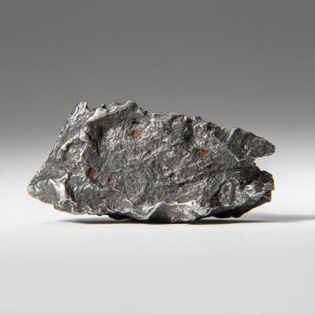 Genuine Natural Sikhote-Alin Meteorite + Display Box // 45 g