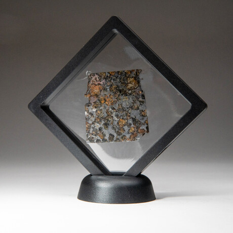 Genuine Seymchan Pallasite Meteorite Slice + Display Box // 20 g