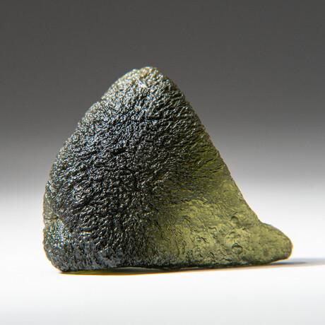 Genuine Natural Moldavite Tektite + Display Box // 14 g