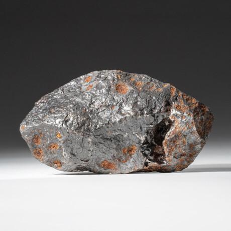 Genuine Natural Canyon Diablo Meteorite // 416 g