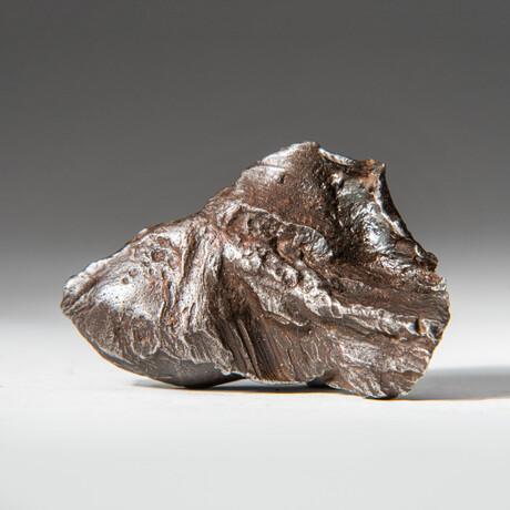 Genuine Natural Sikhote-Alin Meteorite + Display Box // 42 g
