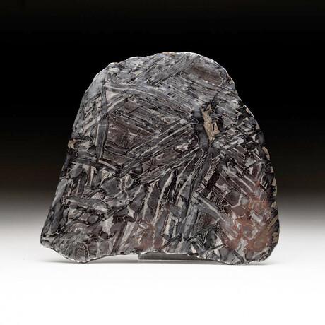 Genuine Seymchan Pallasite Meteorite Slice + Acrylic Display Stand // 185.2 g