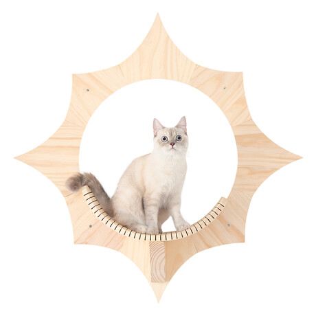Solar // Wall-Mounted Cat Shelf + Floating Cat Bed