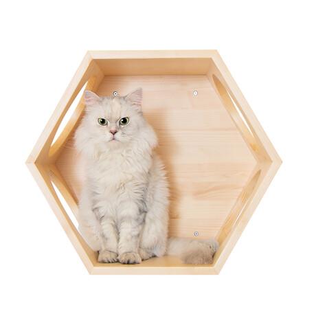 Busy Cat // Hexagon Floating Cat Shelf