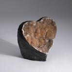 Genuine Citrine Druzy Geode Heart