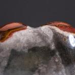 Genuine Polished Polychrome Jasper Heart + Acrylic Display Stand // V2