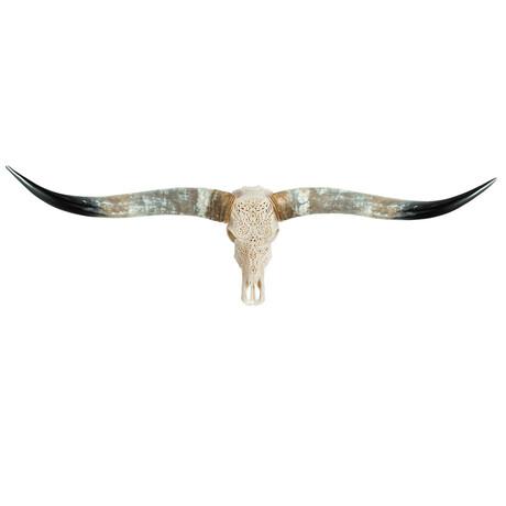 Carved Longhorn Skull // Tribal #2