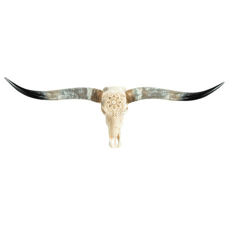 Carved Longhorn Skull // White Mandala