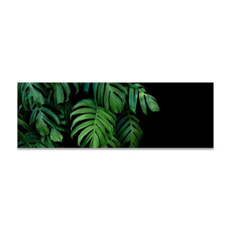 """Plant Texture 1 (16""""H x 48""""W x 0.5""""D)"""