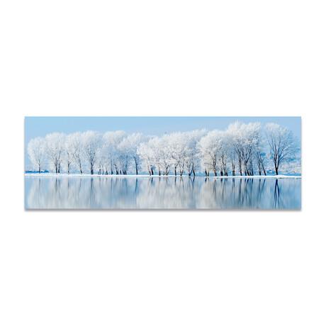 """Frozen Lake & Trees (16""""H x 48""""W x 0.5""""D)"""