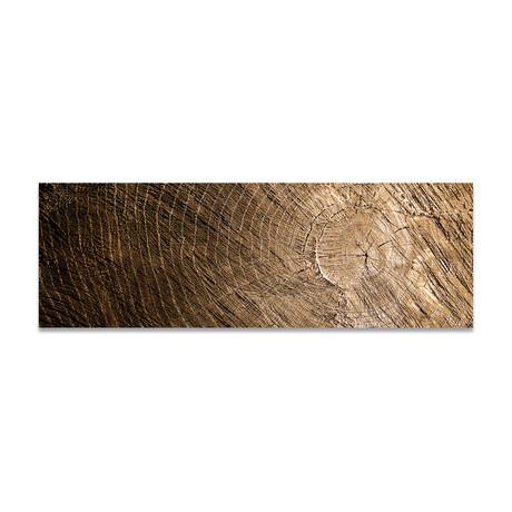 """Wood Texture 2 (16""""H x 48""""W x 0.5""""D)"""