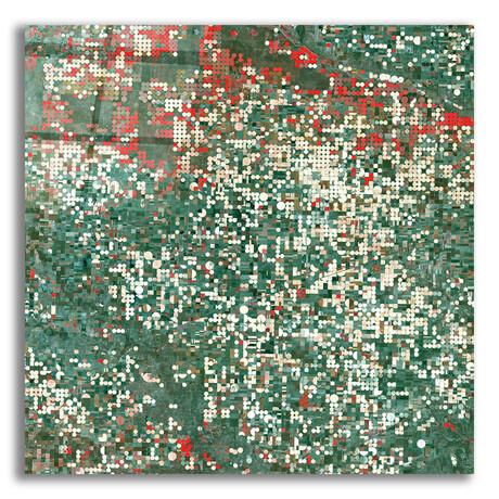 """Garden City (12""""H x 12""""W x 0.13""""D)"""