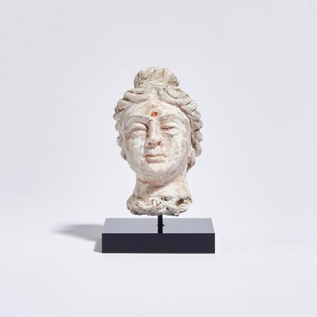 Indus Valley Head of Buddha // 4th - 5th Century AD
