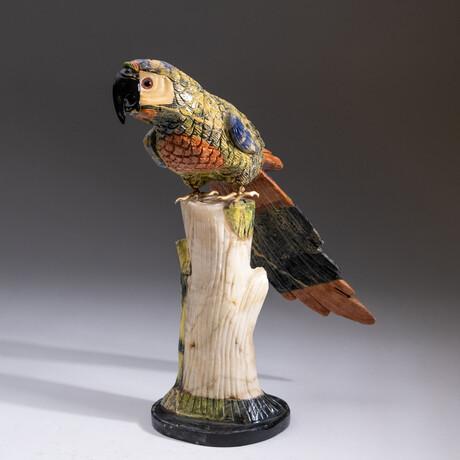Genuine Polished Hand Carved Parrot + Custom Stand // V2