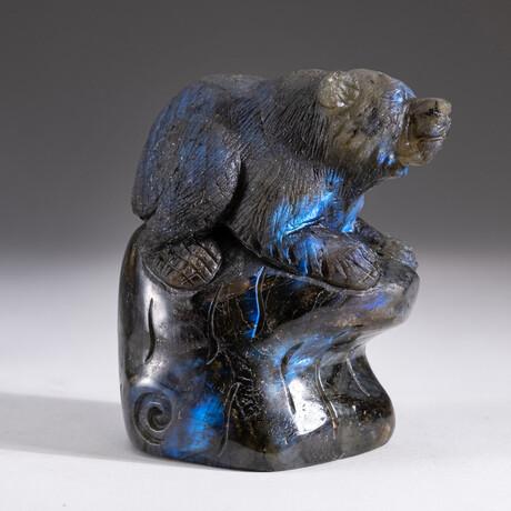 Genuine Natural Labradorite Hand Carved Bear // V1