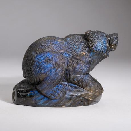Genuine Natural Labradorite Hand Carved Bear // V2