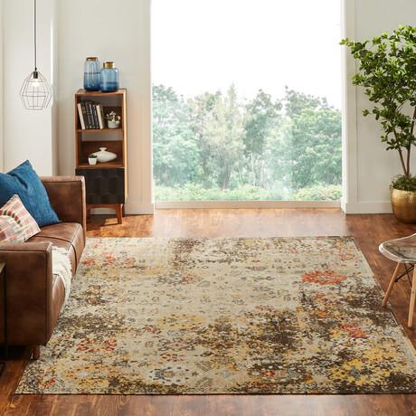Modena Desert Tones Area Rug // Indoor + Outdoor (2' x 3')