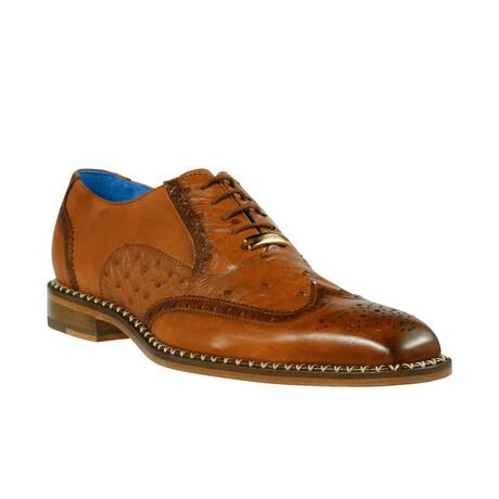 Napoli Shoe // Brandy (US: 8)