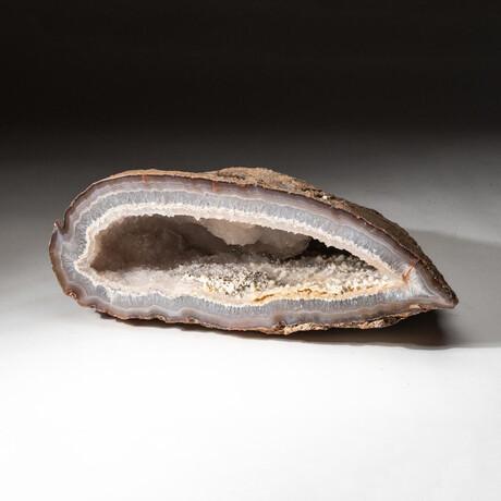 Genuine Natural Druzy Agate Geode