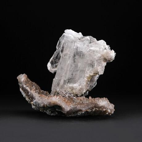 Genuine Natural Gypsum var. Selenite on Matrix