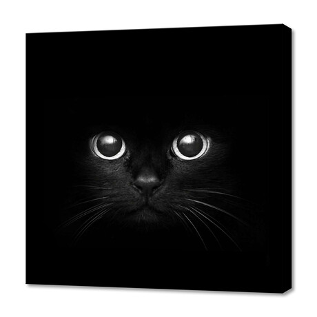 "Black Cat Face (12""W x 12""H x 0.75""D)"
