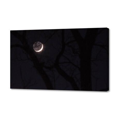 "November Moon (12""W x 8""H x 0.75""D)"