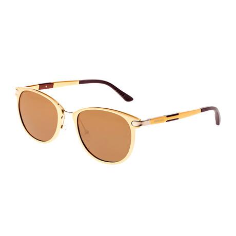 Orion Polarized Sunglasses // Gold Frame + Brown Lens