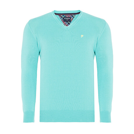 Rory V-Neck Pullover Sweater // Mint (S)
