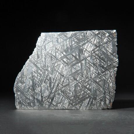 Large Genuine Natural Seymchan Meteorite Slice + Acrylic Display Stand // 371 g