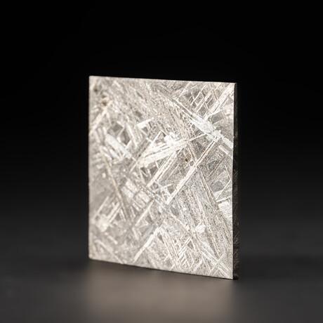 Genuine Natural Seymchan Meteorite Slice + Display Box // 45 g