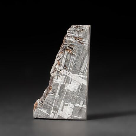 Genuine Natural Seymchan Meteorite Slice + Display Box // 26 g