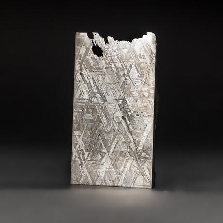 Genuine Natural Seymchan Meteorite Slice + Display Box // 135 g