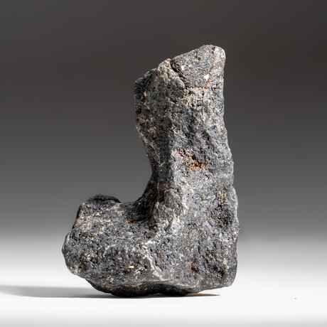 Genuine Natural Campo del Cielo Meteorite // 231 g