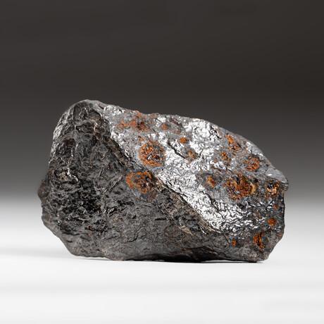 Genuine Natural Canyon Diablo Meteorite + Display Box // 164 g